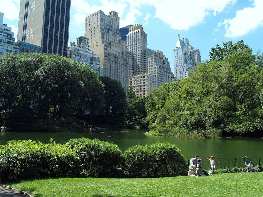 Large 1280px lower central park shot 5